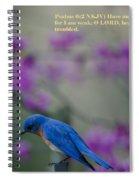 Blue Bird Praying Spiral Notebook