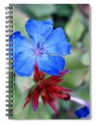 Blue Bloom Spiral Notebook