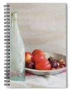 Blue Bottle And Fresh Fruit Spiral Notebook