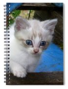 Blue Boy Spiral Notebook