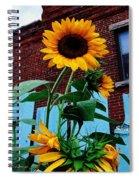Blue Brick And Blaze Spiral Notebook