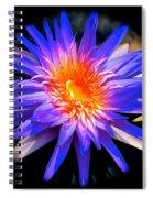 Blue Burst Lily Spiral Notebook