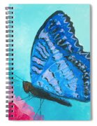 Blue Butterfly Spiral Notebook