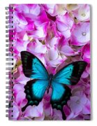 Blue Butterfly On Pink Hydrangea Spiral Notebook