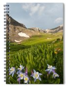 Handie's Peak And Blue Columbine On A Summer Morning Spiral Notebook