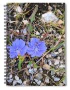 Blue Daisy Spiral Notebook