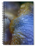 Blue Danube  Spiral Notebook