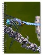 Blue Darter Spiral Notebook