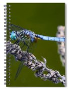 Blue Darter Spiral Notebook