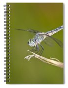Blue Dasher On The Edge Spiral Notebook