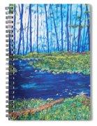 Blue Day Stream Spiral Notebook