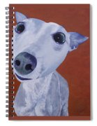 Blue Dog Spiral Notebook