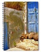 Blue Doors Of Santorini Spiral Notebook