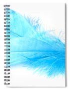 Blue Doubles Spiral Notebook