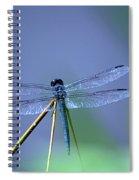 Blue Dragon Spiral Notebook
