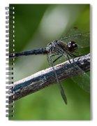 Blue Dragonfly 2 Spiral Notebook