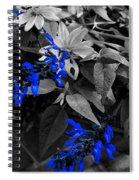 Blue Drippings Spiral Notebook