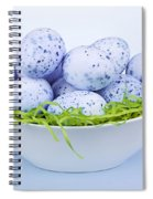 Blue Easter Eggs In Bowl Spiral Notebook