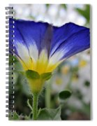 Blue Enchantment Side Spiral Notebook
