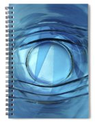 Blue Eye Spiral Notebook