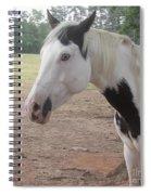 Medicine Hat Horse Spiral Notebook