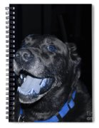 Blue Eyed Lab Smiling For The Camera Spiral Notebook