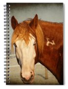 Blue Eyed Paint Spiral Notebook