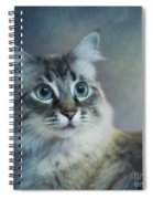Blue Eyed Queen Spiral Notebook