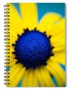 Blue Eyed Susan Spiral Notebook