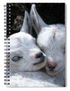 Blue-eyed Twins Spiral Notebook