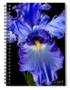 Blue Flag Spiral Notebook