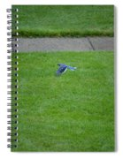 Blue Flight Spiral Notebook