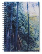 Blue Forest By Jrr Spiral Notebook