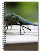 Blue Green Darter Spiral Notebook