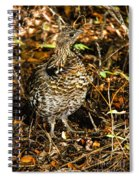 Blue Grouse Spiral Notebook