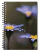 Blue Haze Spiral Notebook
