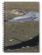 Blue Heron And Shadow Spiral Notebook