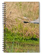 Blue Heron And The Black Bird Spiral Notebook