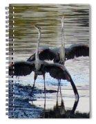 Great Blue Heron Ballet Spiral Notebook