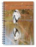Blue Heron Grooming Spiral Notebook