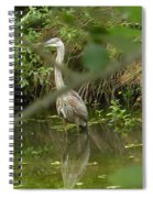 Blue Heron Hiding Reflection Spiral Notebook