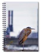 Blue Heron In Manayunk Spiral Notebook
