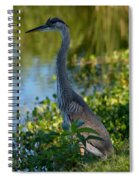 Blue Heron In The White Light Spiral Notebook