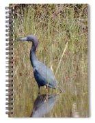Blue Heron Spiral Notebook