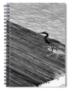 Blue Heron On Dock - Grayscale Spiral Notebook