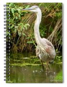 Blue Heron Reflection Spiral Notebook