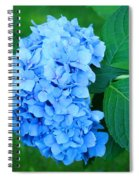 Blue Hydrangea Flower Art Prints Nature Floral Spiral Notebook