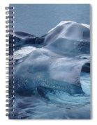 Blue Ice Sculpture Spiral Notebook