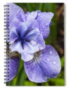 Blue Iris Flower Raindrops Garden Virginia Spiral Notebook