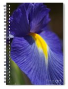 Blue Iris With Yellow Spiral Notebook